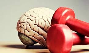 Estimulação mental e física